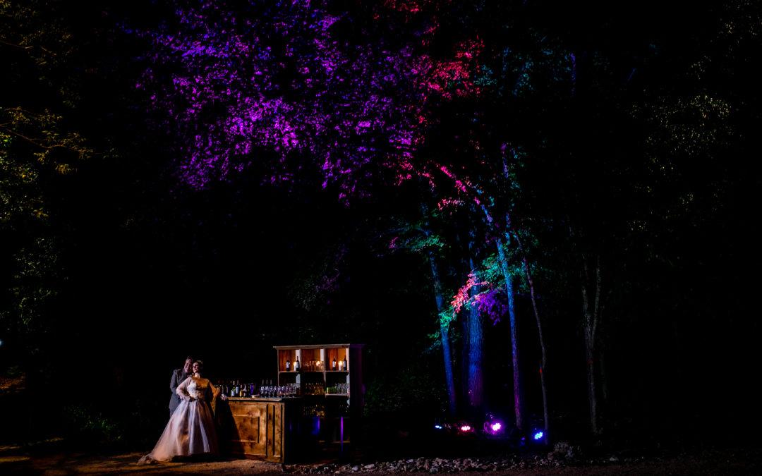 Liz and Steven // Umlauf Sculpture Garden Wedding