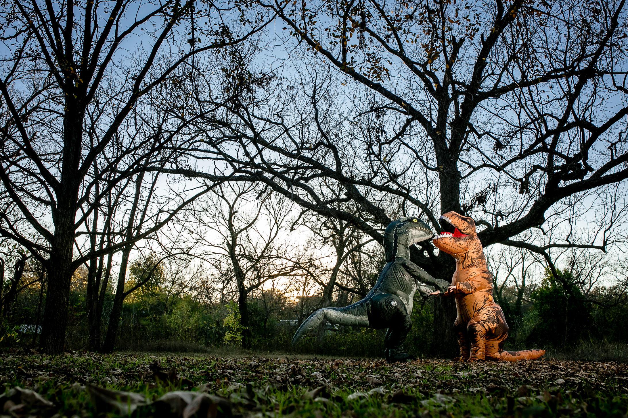Dinosaur Engagement Session!